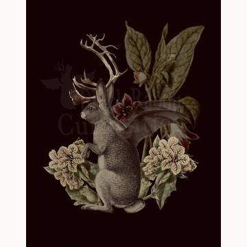 5x7 Jackalope Vespertilio Creepture Print (Dark)