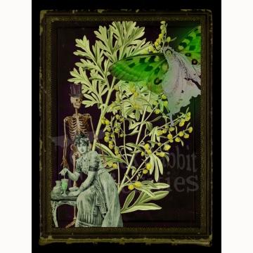 "5x7 La Fée Verte ""The Green Fairy"" Print"